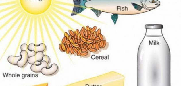 صور اين يوجد فيتامين د , ما الاطعمة التي تحتوي على فيتامين د