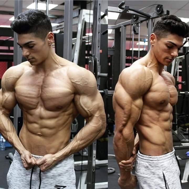 صور ابطال كمال اجسام , رياضه تكبير العضلات