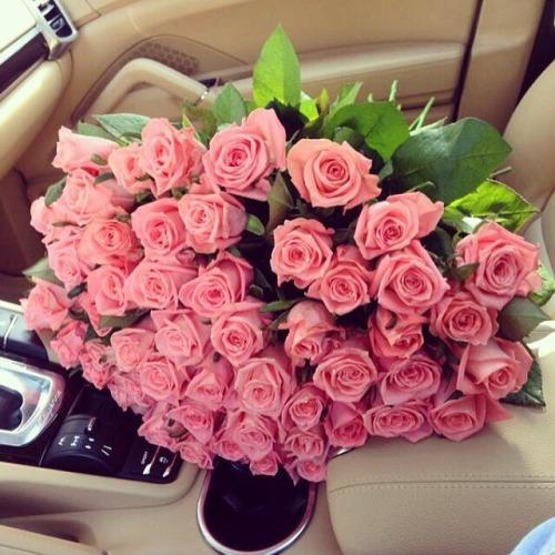 صورة صور احلى ورد , اجمل الورود الحمراء