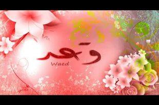 صور معنى اسم وعد , صفات وعد