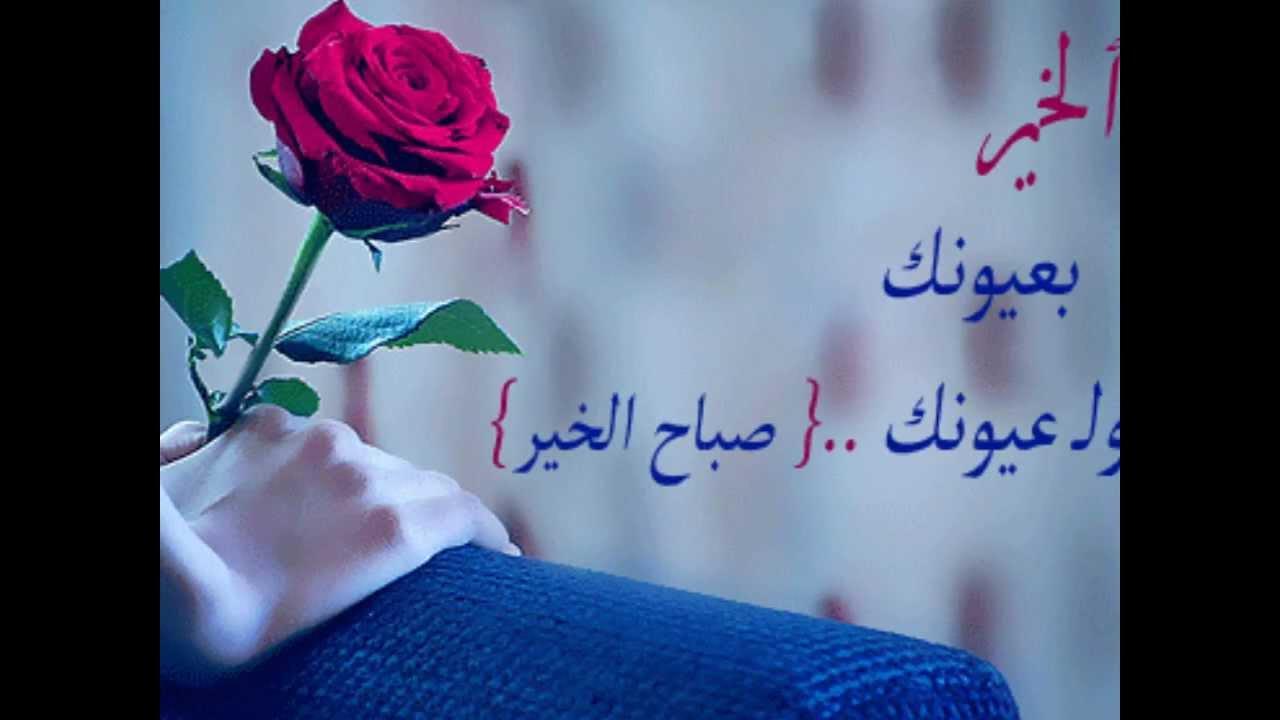 صورة صباح الورد حبيبي صور , صور صباحيه بالعبارات لترسلها لمن تحب