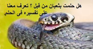 صور تفسير حلم الثعابين في البيت , تفسير رؤيه الثعابين في المنام