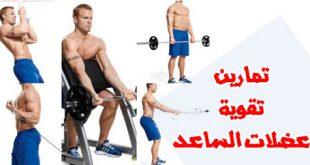 صورة تمرين العضلات , تمارين سهلة لتقوية العضلات