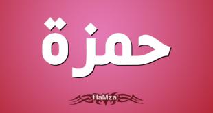 معنى اسم حمزة , معاني الاسماء حمزة