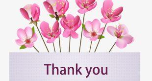 صورة شكرا على كل شي , عبارة شكرا فى جميع الاحوال وعلى كل شئ