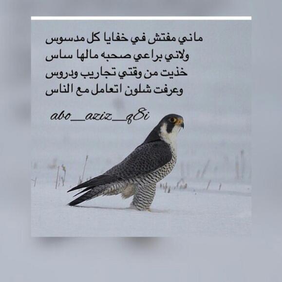 شعر حب Has012 Twitter