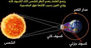 صورة حقائق علمية , اغرب الحقائق العلمية