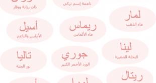 صورة اسماء بنات جديدة , قاموس لاجدد الاسماء 5257 6 310x165