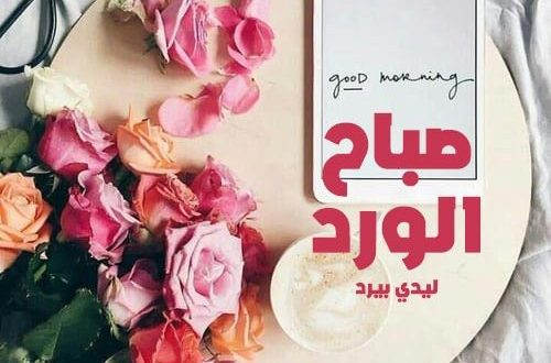 صور صور صباح الورد , اجمل صور مكتوبا عليها صباح الورد والفل