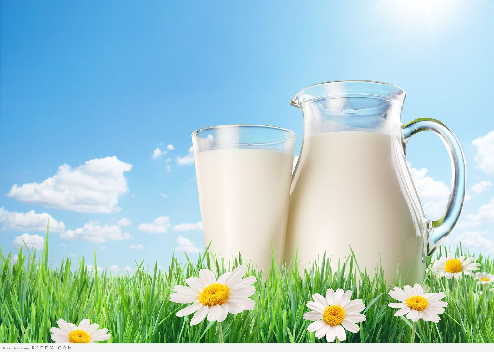 صورة فوائد اللبن , مالا تعرفه عن اهميه الحليب لجسم الانسان