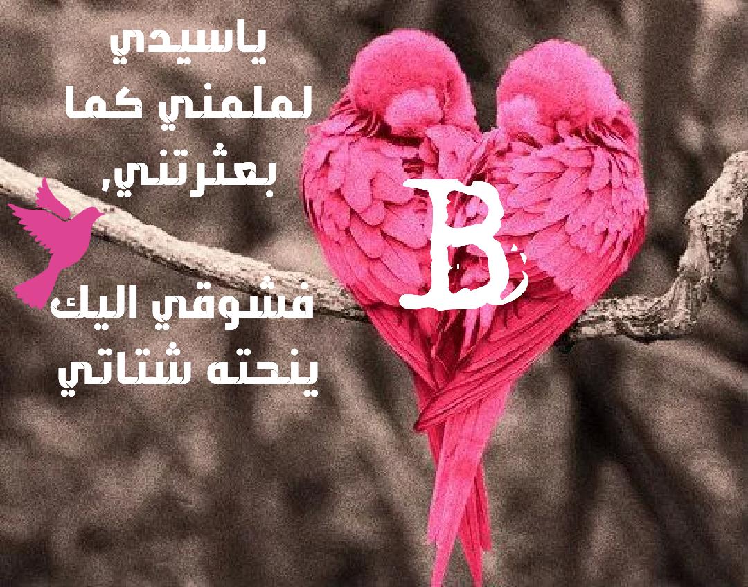 صورة صور حرف b , بالالوان الزاهية والاشكال المزخرفة صور لحرف b