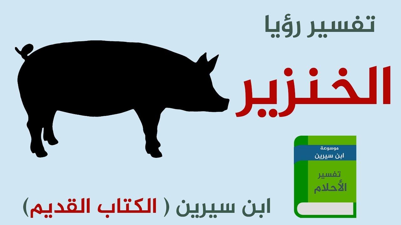 صور تفسير رؤية الخنزير في المنام , رايت خنزير فى منامى انا خائفه
