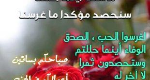 صورة كلام حلو صباح الخير , صباح النور