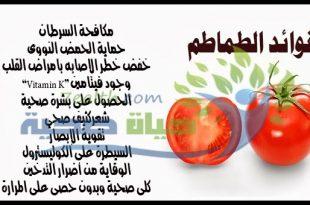 صور فوائد اكل الطماطم , فائدة الطماطم الكبيرة