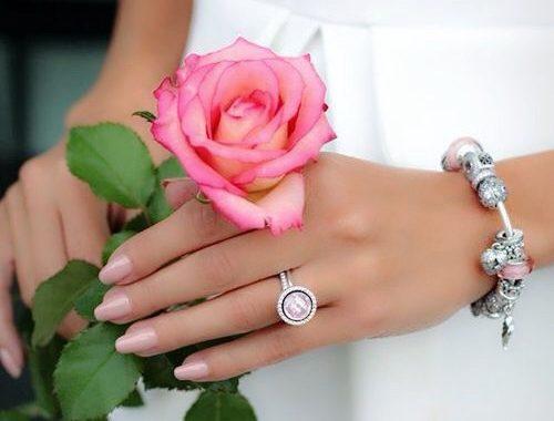 صورة صور ورود كرتون , صورة وردة جميلة