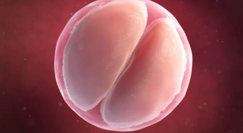 صورة اعراض الحمل في الاسبوع الاول قبل الدورة , البوادر الاولية للحمل