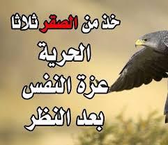 صورة صور صقور مكتوب عليها , يعتبر الصقور من الطيور الجارحه