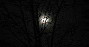 صور عن الليل , الليل وهدوءه وسكونه