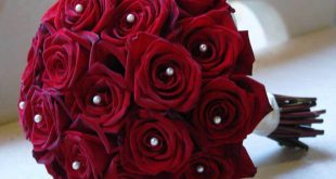 صورة احلى صور ورد , اكثر صور الورد جمالا