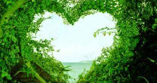صور صور طبيعة جميلة , اجمل الصور الطبيعية
