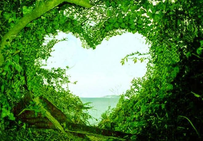 صورة صور طبيعة جميلة , اجمل الصور الطبيعية