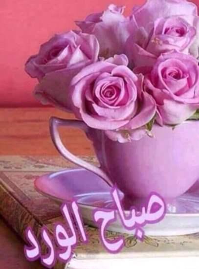 صورة صور صباح للحبيب , صور جميله جدا لصباح للحبيب