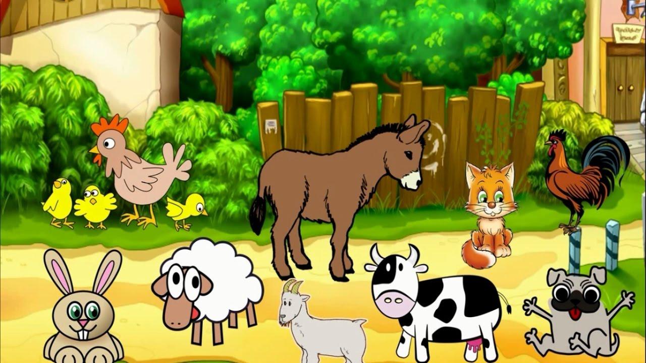 صورة بحث عن الحيوانات الاليفة , مقال عن الحيوان المستانس