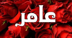 صور ما معنى اسم عامر , مفردات اسم عامر وصفاته