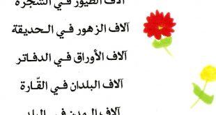 صورة احلى كلام عن الام , افضل كلمات عن الوالده