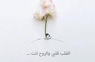 صورة كلمات حب للزوج قصيره , مقولات رومانسيه بسيطه لزوجى