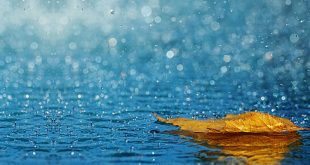 صورة خلفيات مطر , لقطات رائعه عن الشتاء