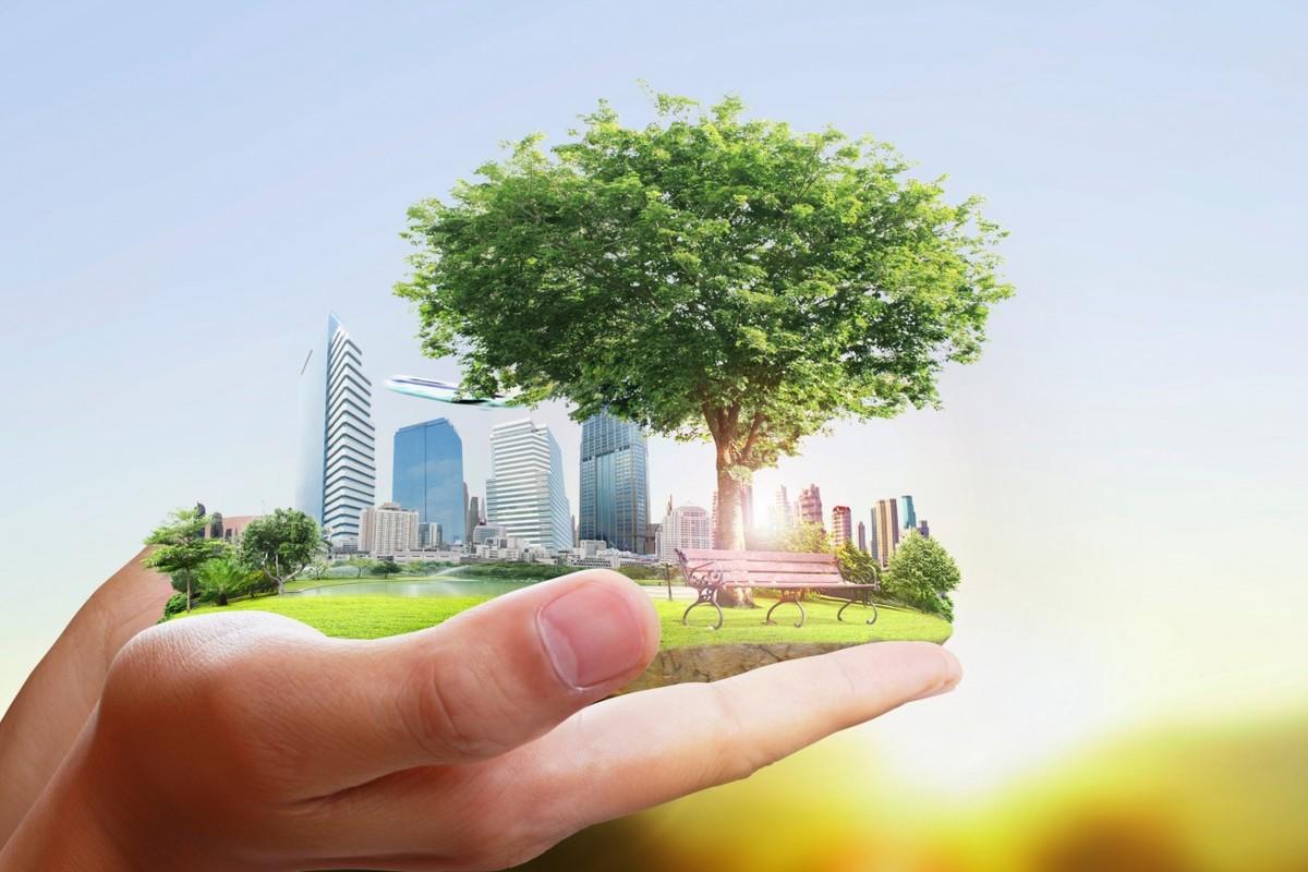 صورة تعبير عن البيئة , موضع بحث عن البيئه