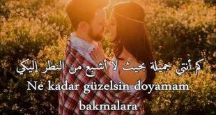 صورة حب تركى , كلمات تركية رومانسية