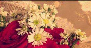 صورة خواطر عن الورد, هدية ابهرت الجميع