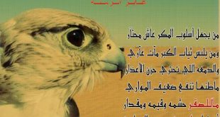 صورة ابيات شعر مدح وفخر, قصائد عربية لعشاق الشعر