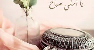 صورة صباح الورد حبيبتي, مكالمة لطيفة بداية اليوم تنور حياتك