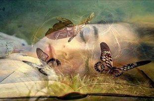صورة تفسير رؤية الحبيب في المنام, احلم كل يوم بالشخص الذي احببته